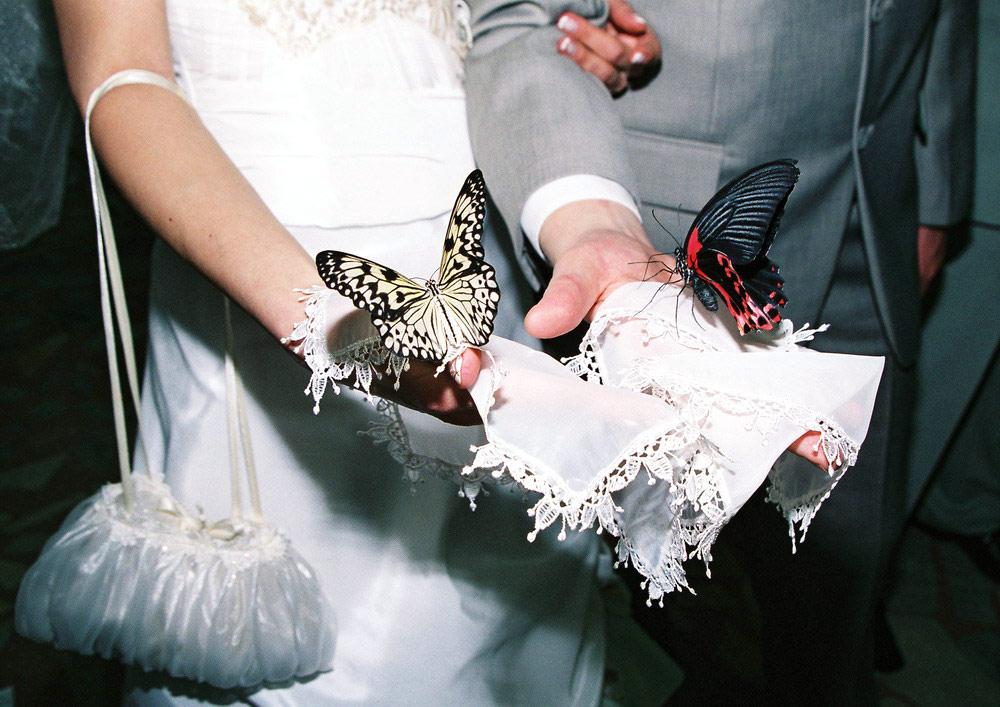 свадебные салоны Астрахани