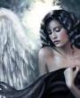 Ангел, студия красоты